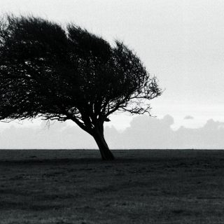 Against wind